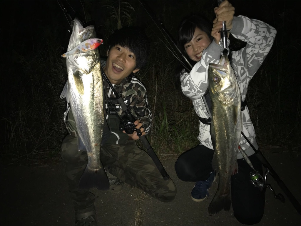f:id:shokicimorikawa:20181108145610j:plain