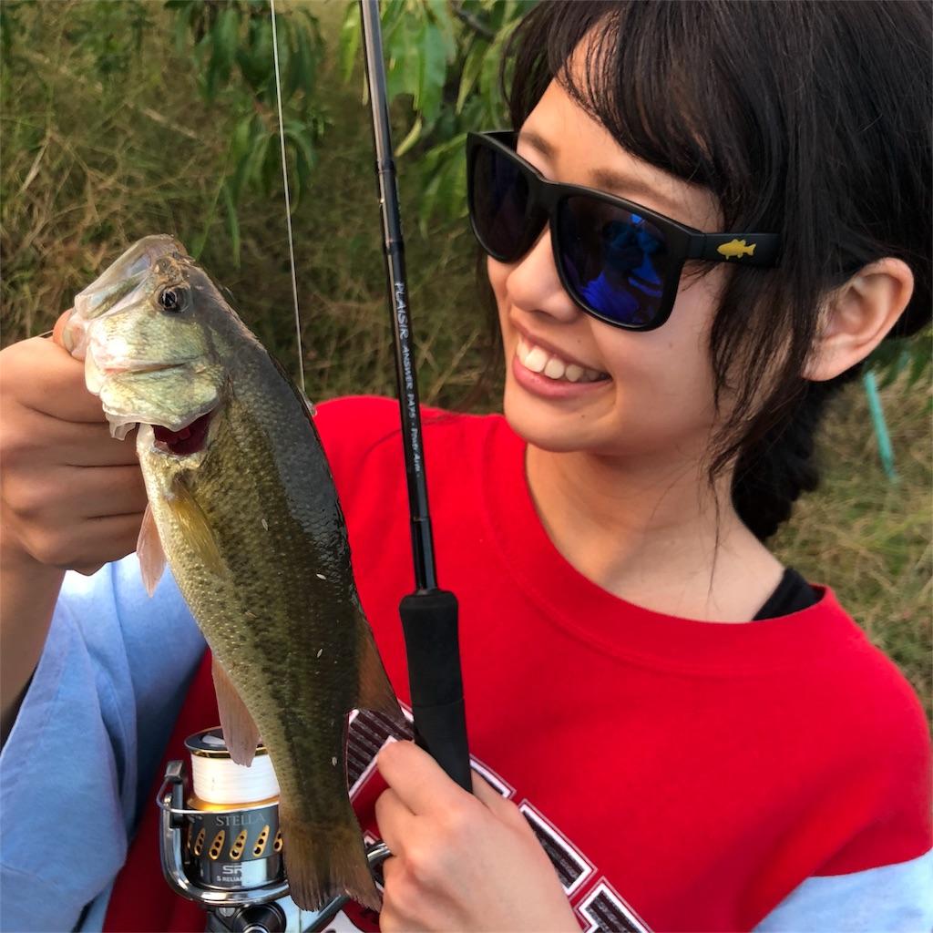 f:id:shokicimorikawa:20181108145655j:plain