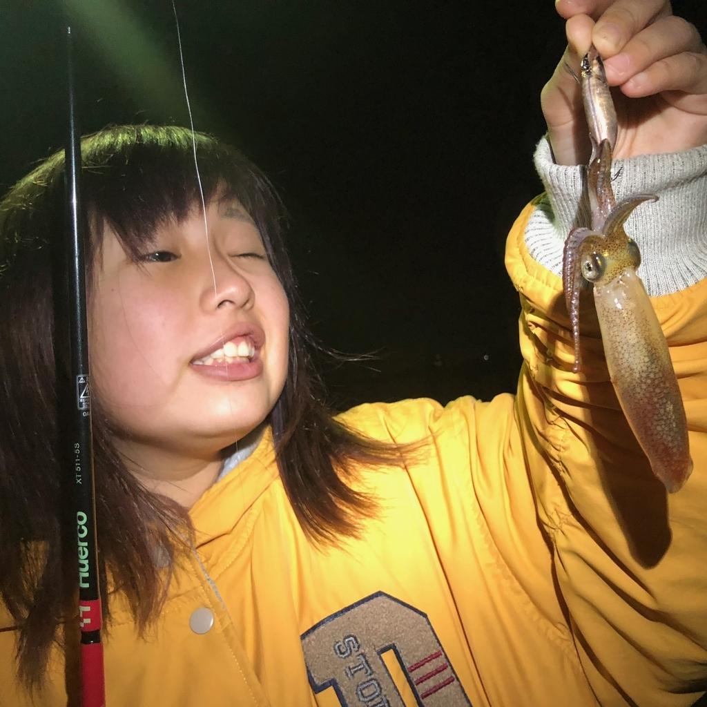 f:id:shokicimorikawa:20181230163222j:plain