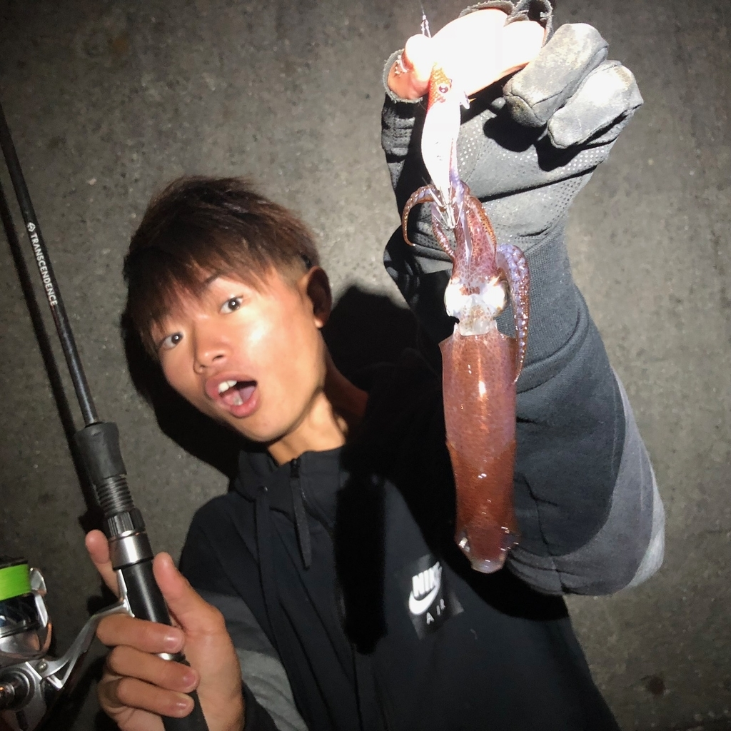 f:id:shokicimorikawa:20181230170223j:plain