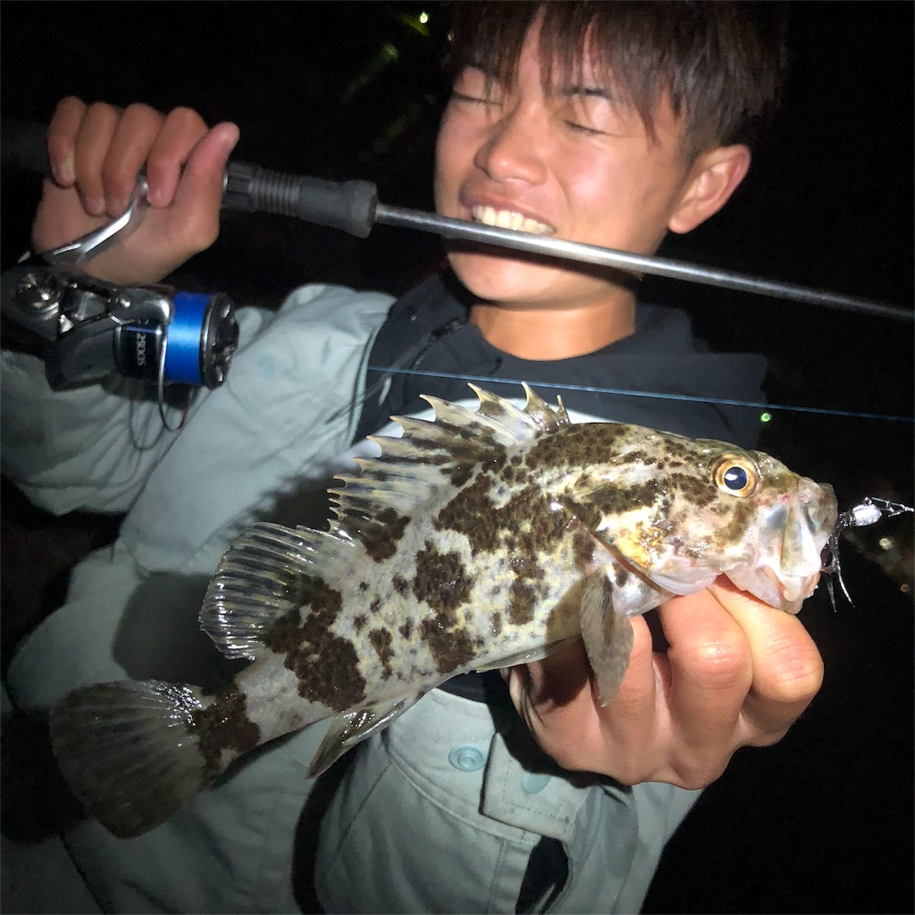 f:id:shokicimorikawa:20190102132807j:plain