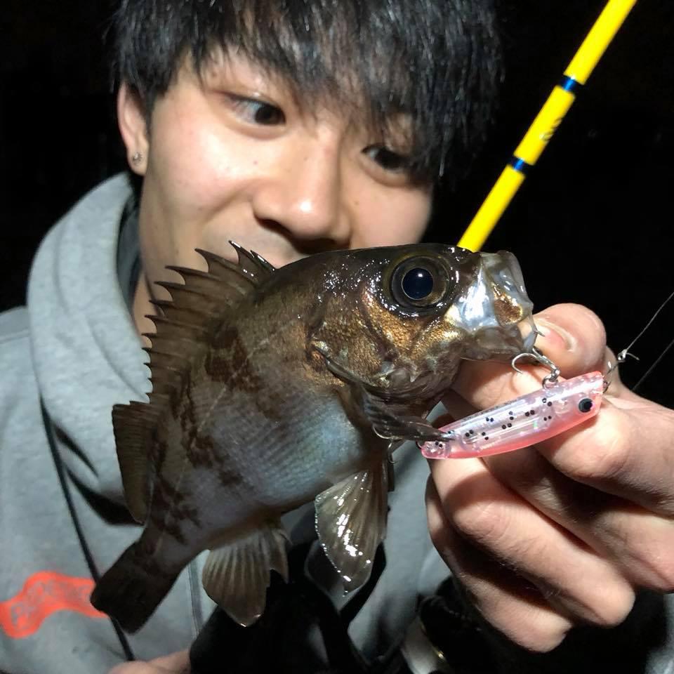 f:id:shokicimorikawa:20190121195400j:plain