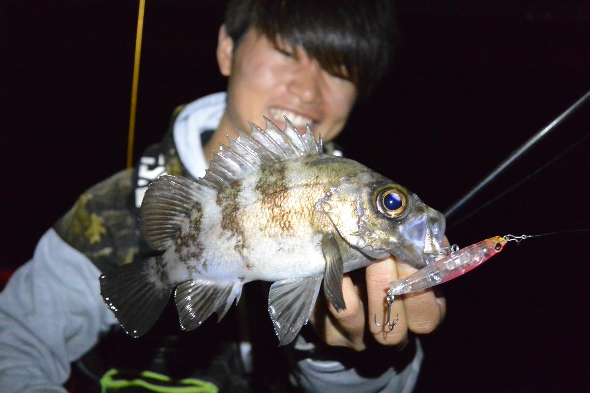 f:id:shokicimorikawa:20190422175519j:plain