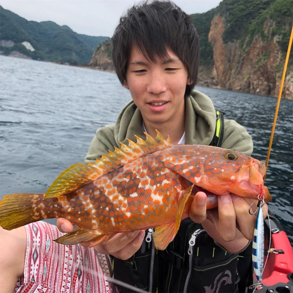 f:id:shokicimorikawa:20190621125533j:image