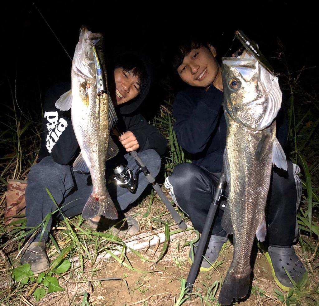 f:id:shokicimorikawa:20191111203455j:plain