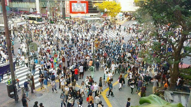 渋谷スクランブル交差点 人口密集