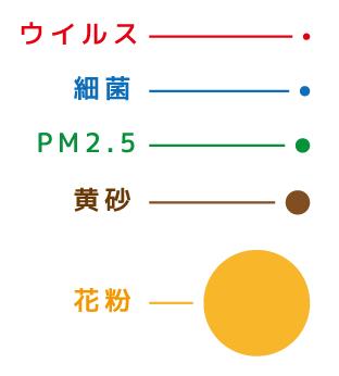 粒子径の比較