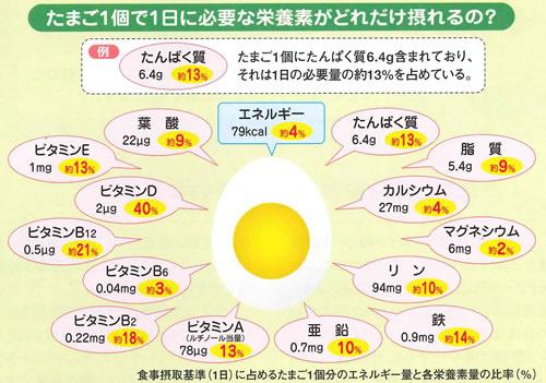 卵の栄養素