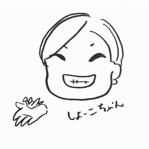 f:id:shoko-origami:20170911235055j:image