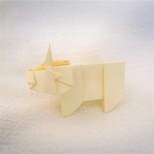 f:id:shoko-origami:20171027205733j:image