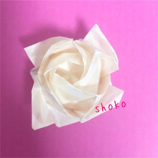 f:id:shoko-origami:20180213195720j:image