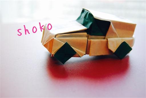 f:id:shoko-origami:20180504232211j:image