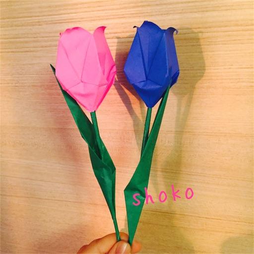 f:id:shoko-origami:20180515230806j:image