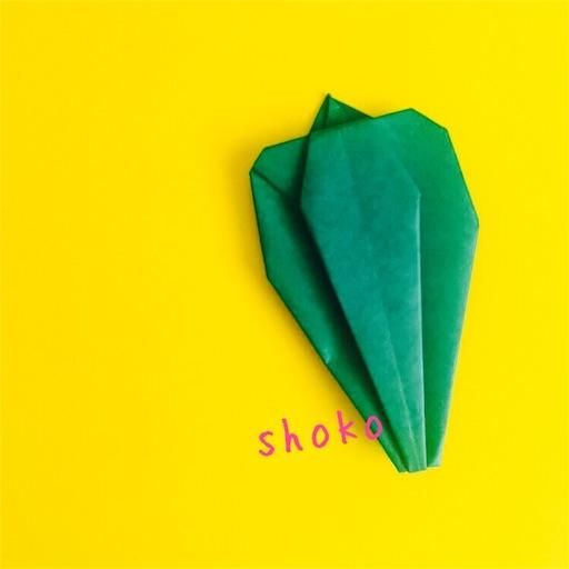 f:id:shoko-origami:20180531222653j:image