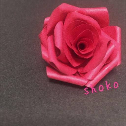 f:id:shoko-origami:20180608155849j:image
