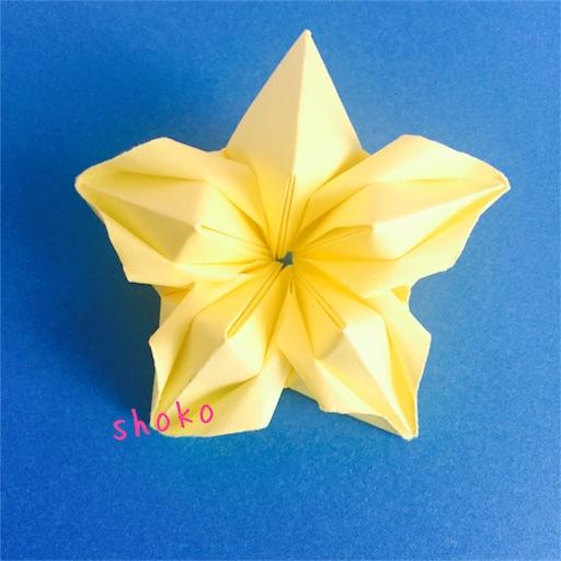 f:id:shoko-origami:20180613232957j:image