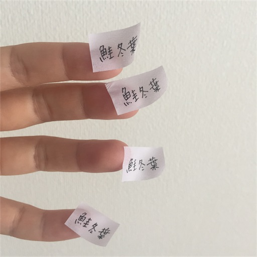 f:id:shoko-origami:20180824234817j:image