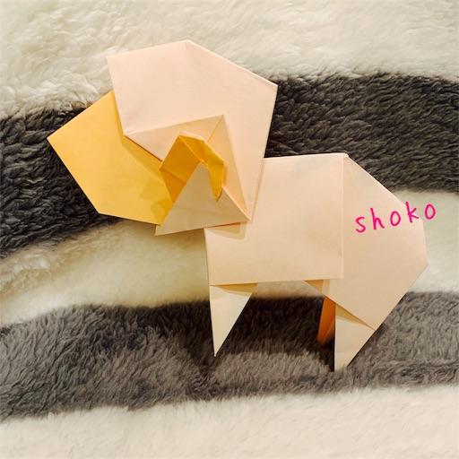 f:id:shoko-origami:20190103232235j:image