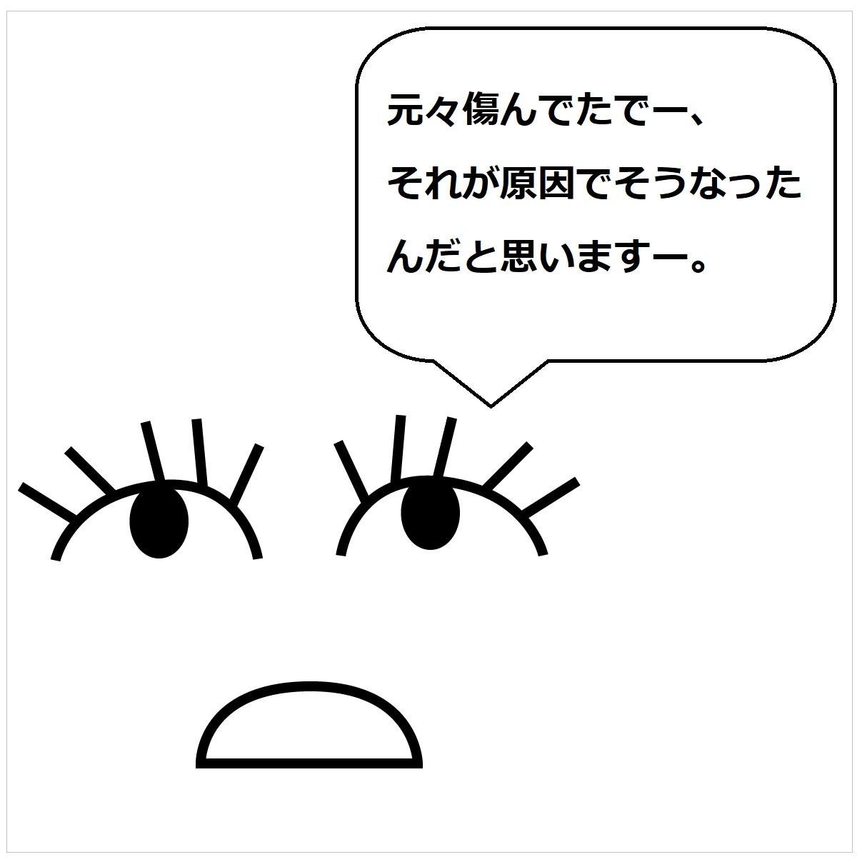 f:id:shokochun:20191124151137j:plain