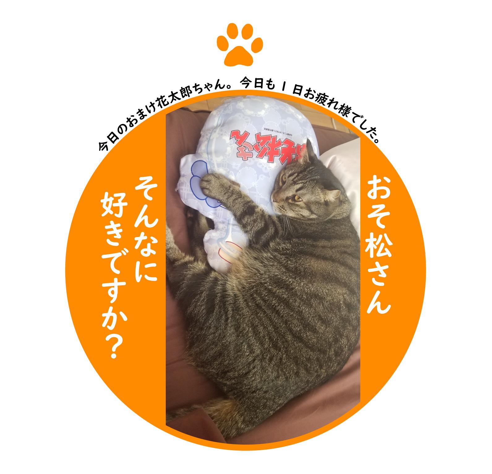 f:id:shokochun:20191222165204j:plain