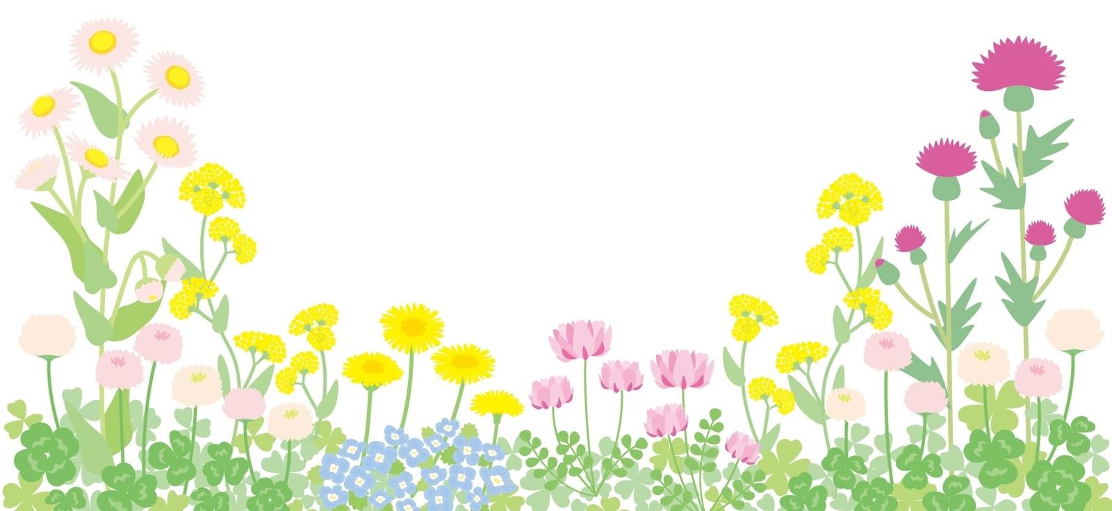 花太郎BLOG_綺麗な花にも臭みあり!?美しき臭い花を調べてみた(´・ω・`)