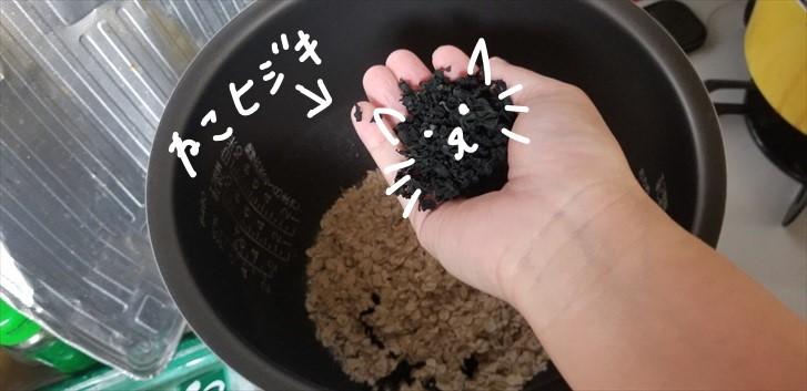 【下準備10分以内】【糖質制限ダイエット】10号炊き炊飯器で作る話題の沼レシピ!#007