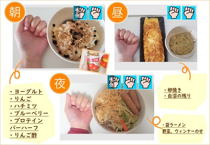 糖質制限 ダイエットメニュー記録【最終8週間目】\腸内環境を整えよう/