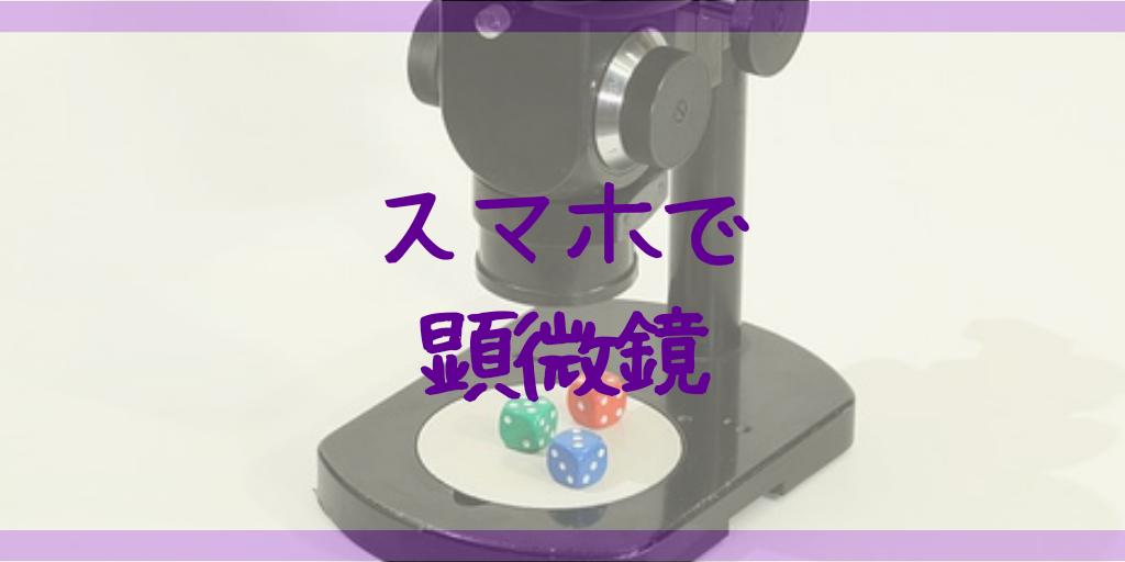 夏休みの自由研究はスマホ顕微鏡で!身近な〇〇を見てみよう