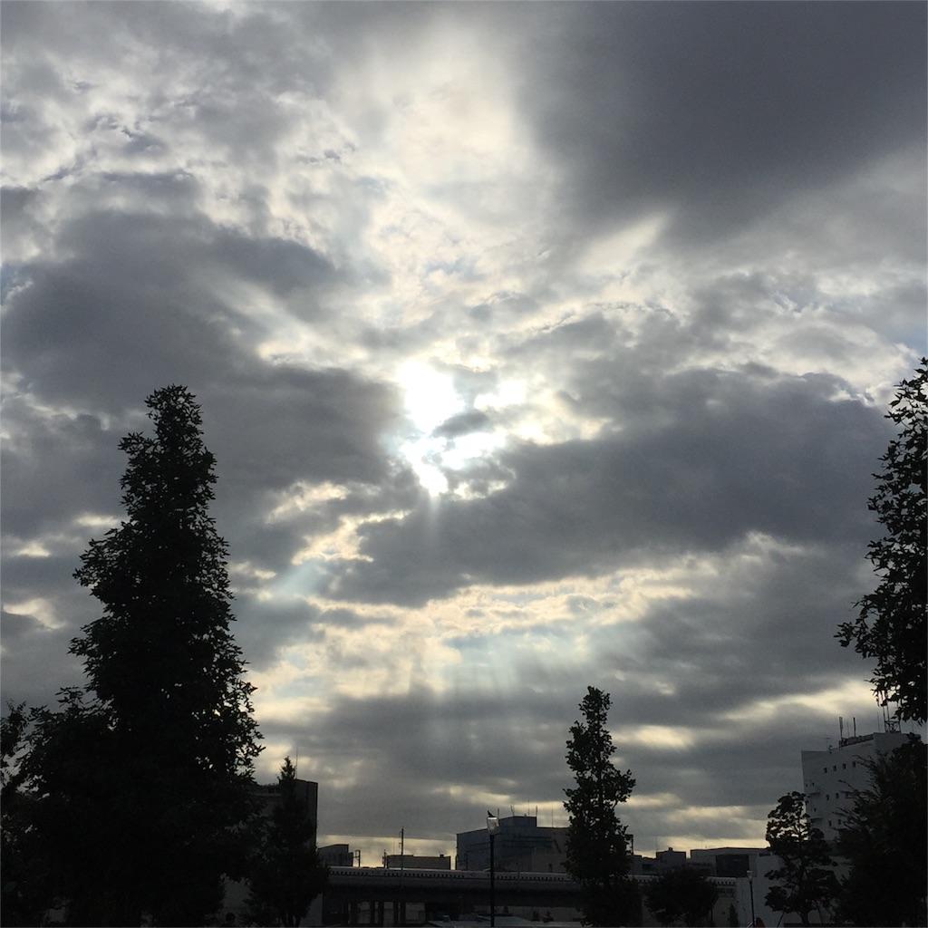 f:id:shokubutsuryoku:20160930213013j:image