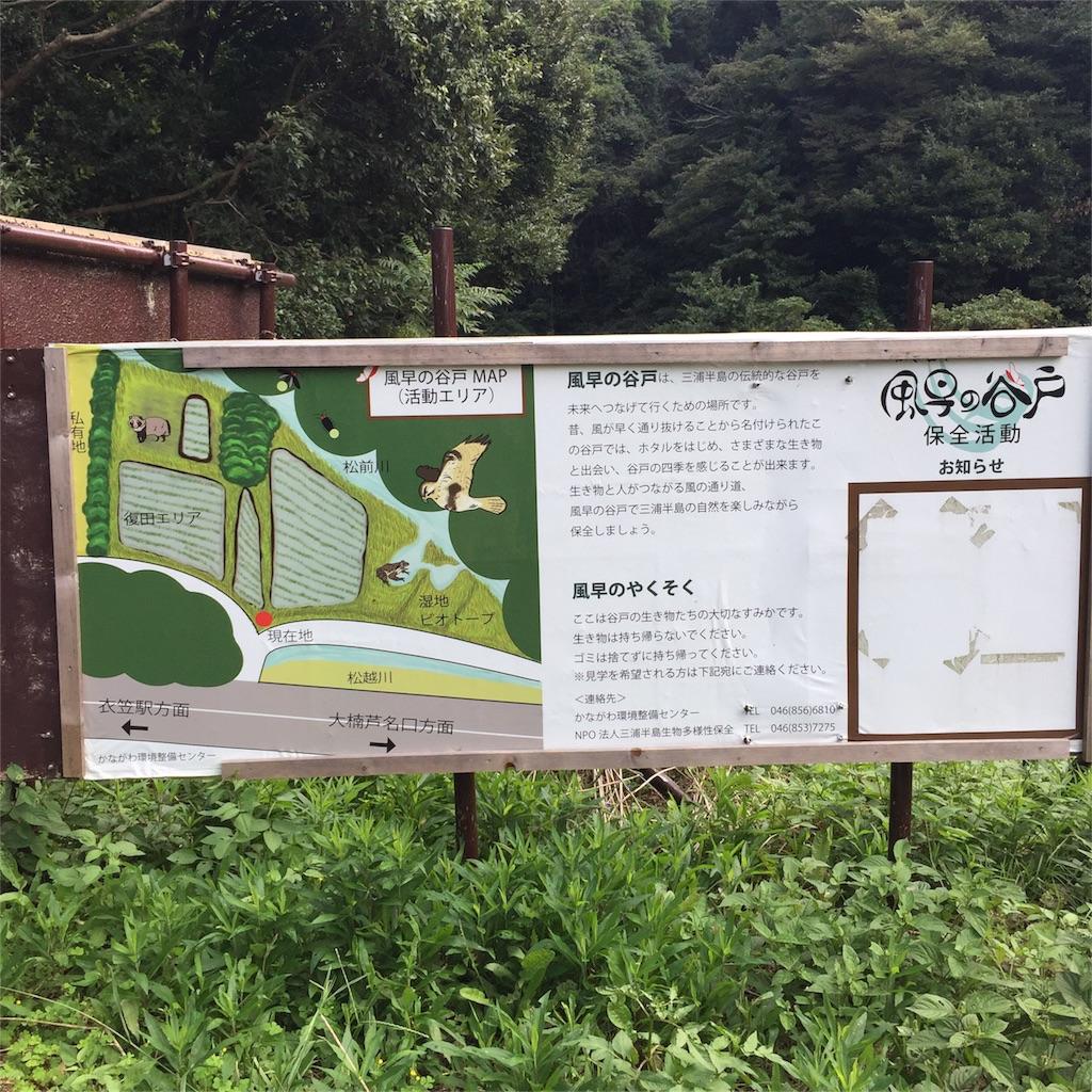 f:id:shokubutsuryoku:20161003183231j:image