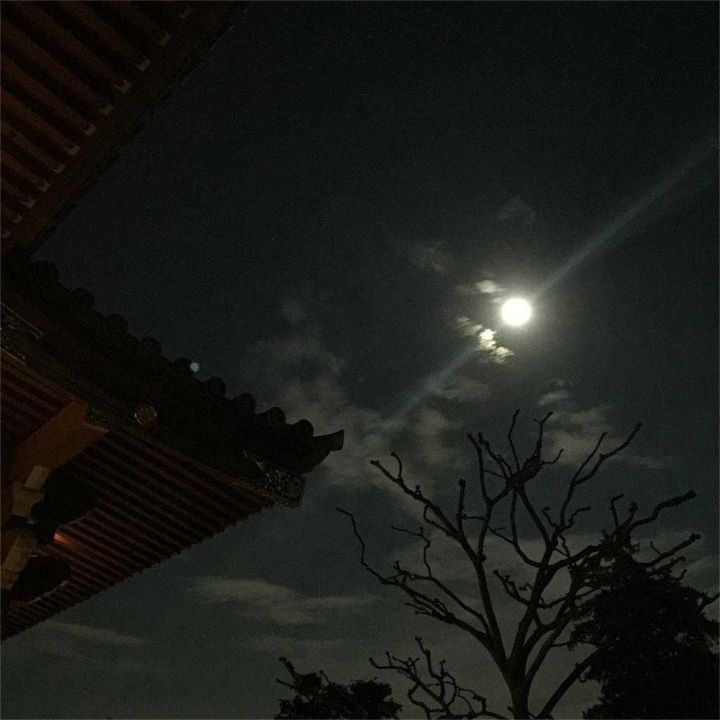 f:id:shokubutsuryoku:20161019113054j:image