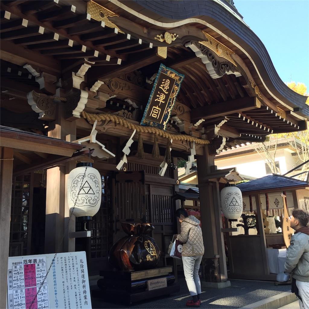 f:id:shokubutsuryoku:20161206073601j:image