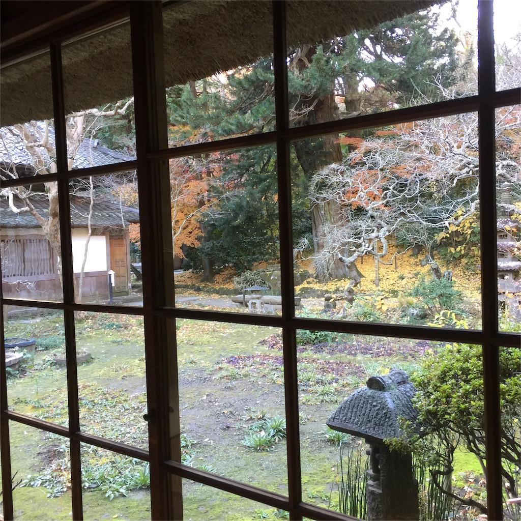 f:id:shokubutsuryoku:20161213070150j:image