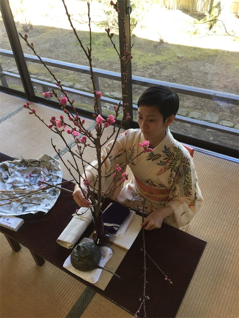 f:id:shokubutsuryoku:20170311155017j:image