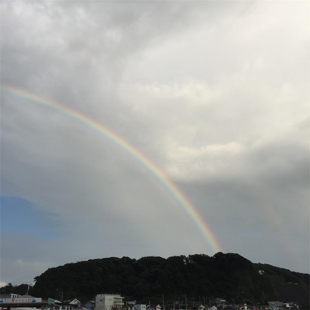 f:id:shokubutsuryoku:20170419101220j:image
