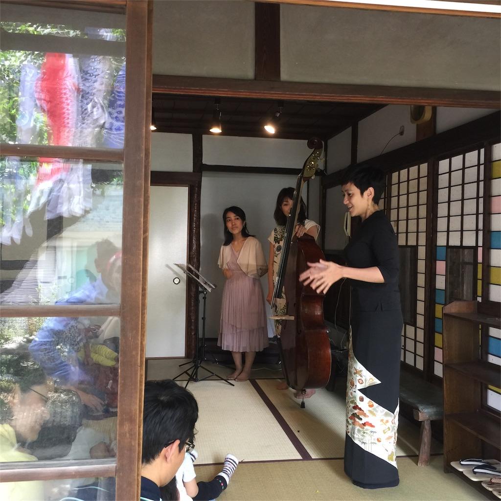 f:id:shokubutsuryoku:20170508081617j:image