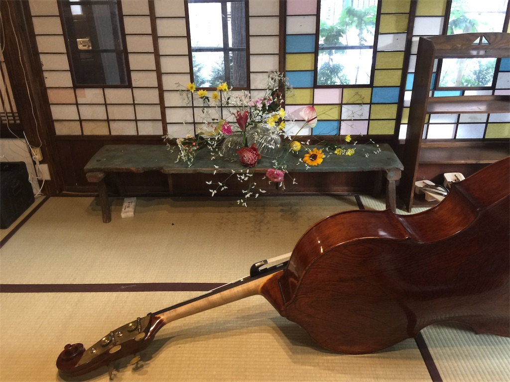 f:id:shokubutsuryoku:20170508081635j:image