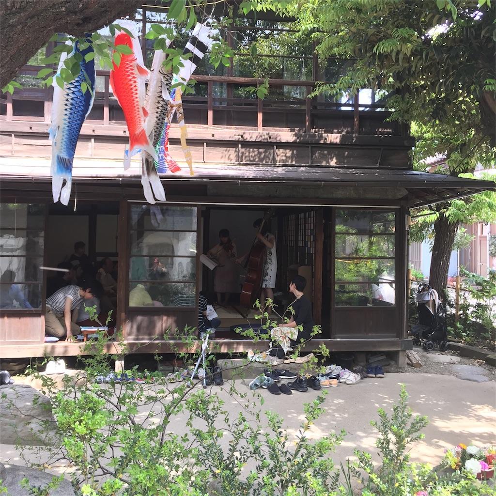f:id:shokubutsuryoku:20170508092527j:image