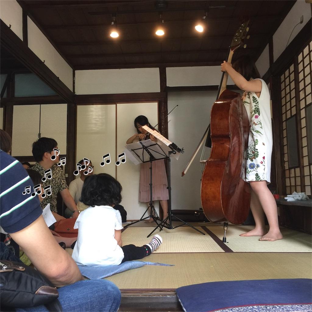 f:id:shokubutsuryoku:20170508095131j:image