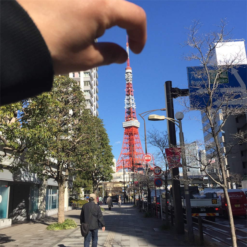 f:id:shokubutsuryoku:20170519201643j:image