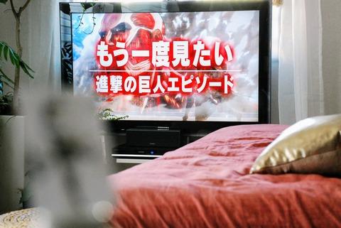 f:id:shokubutsuzoku:20190117151439j:plain