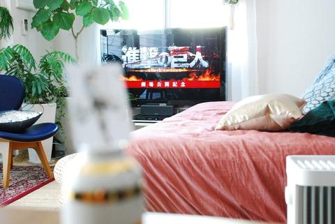 f:id:shokubutsuzoku:20190117151446j:plain