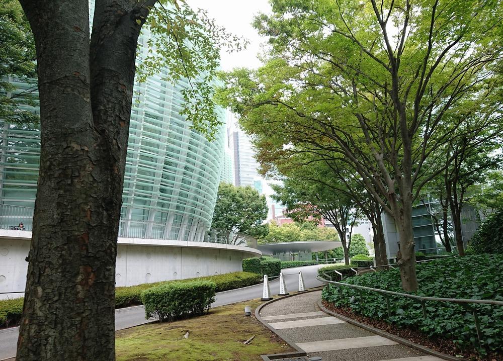 f:id:shokubutsuzoku:20190119181534j:plain