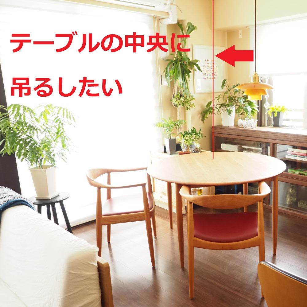 f:id:shokubutsuzoku:20190119191056j:plain