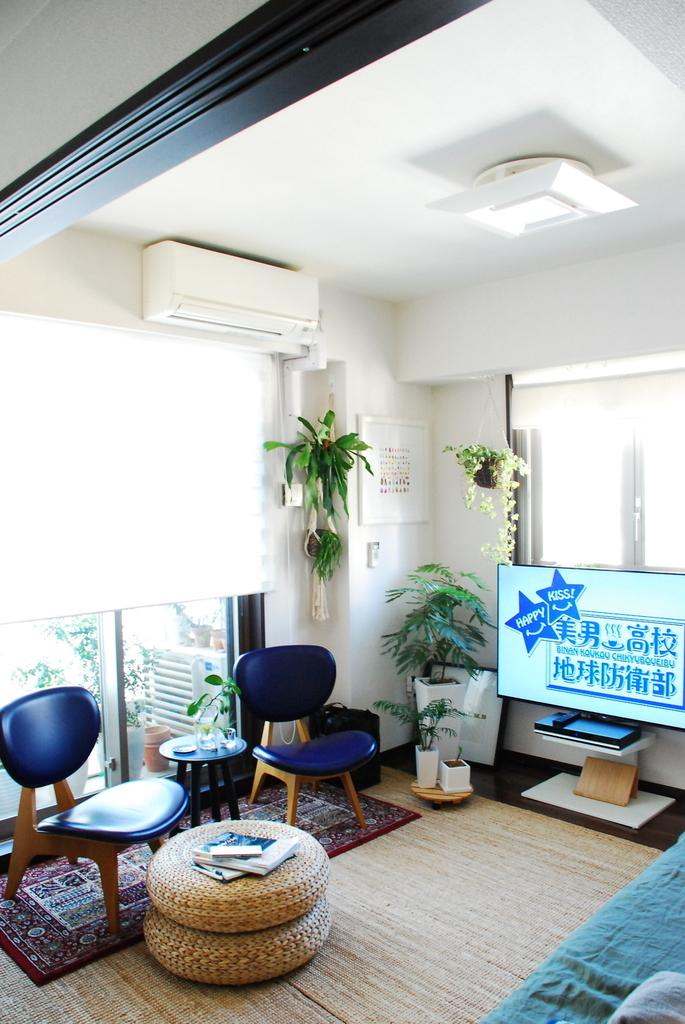 f:id:shokubutsuzoku:20190122215626j:plain