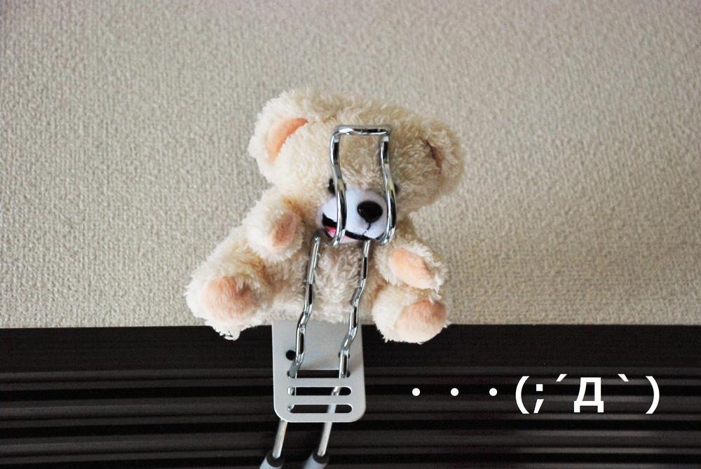 f:id:shokubutsuzoku:20190129181757j:plain