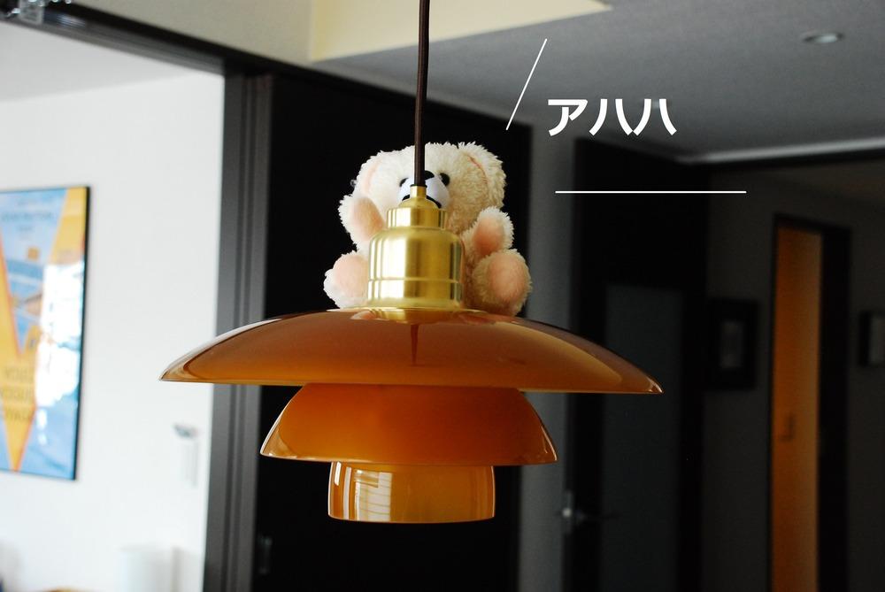 f:id:shokubutsuzoku:20190129181801j:plain