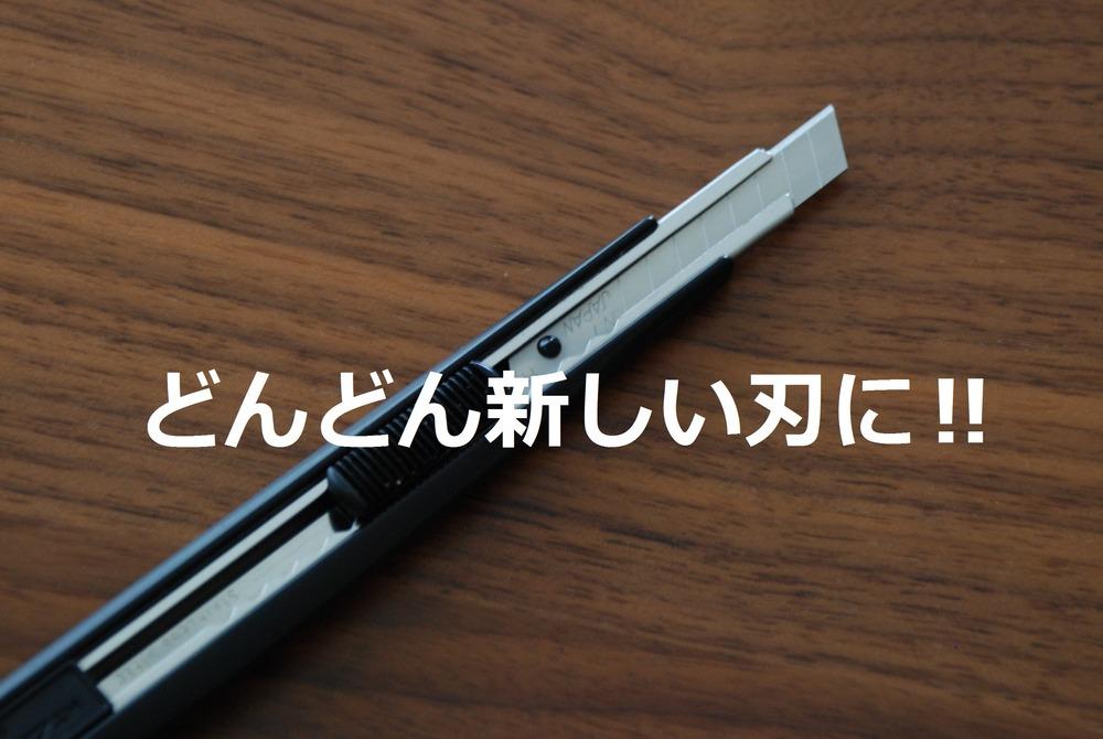 f:id:shokubutsuzoku:20190129184932j:plain