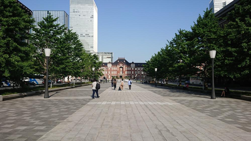 f:id:shokubutsuzoku:20190129203540j:plain