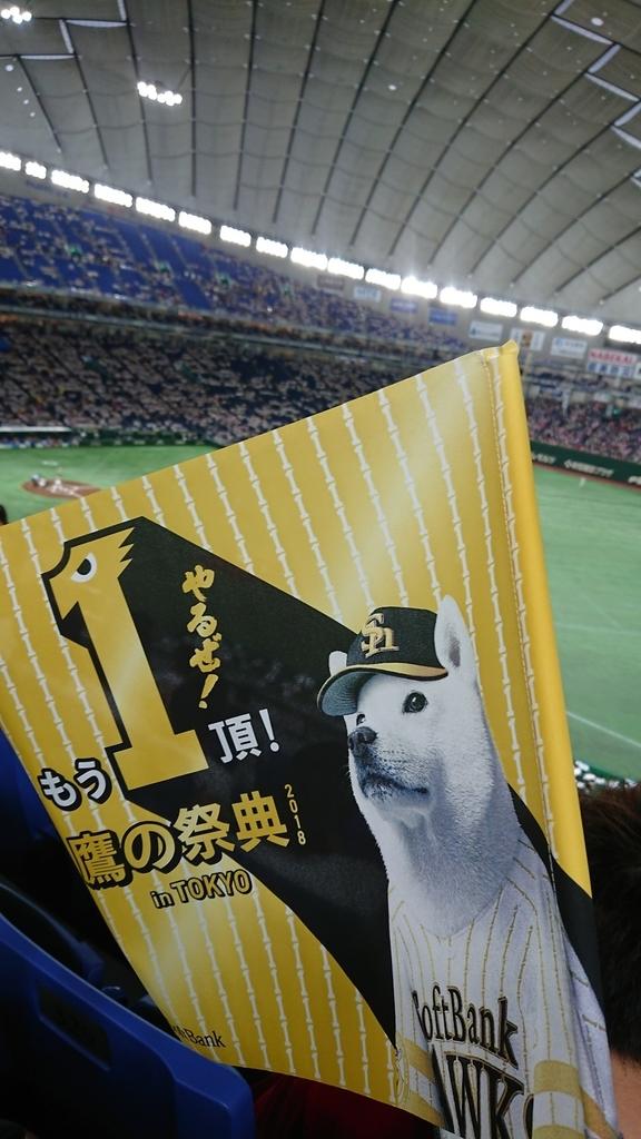 f:id:shokubutsuzoku:20190129205921j:plain
